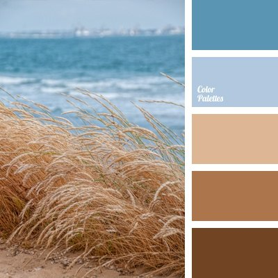 Photo Page | HGTV |Brown Blue Color