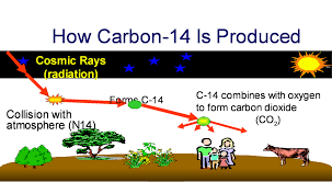 What is meant by carbon dating