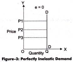 What Is The Difference Between Relatively Inelastic And Perfect