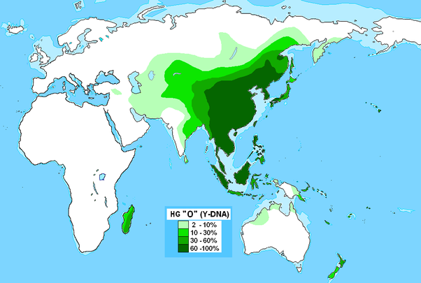 What percentage of the world has Mongolian DNA? - Quora on edgar casey map of the world, genome map world, show a map of the world, elder scrolls map of the world, a physical map of the world, skin color map of the world, plate tectonics map of the world, freedom map of the world, haplogroups of the world, physical features map of the world, dna human migration, peters projection map of the world, acid rain map of the world, red map of the world, climate zone map of the world, game of thrones map of the world, emissions map of the world, dna scientists and discoveries, new yorker map of the world, ranger's apprentice map of the world,