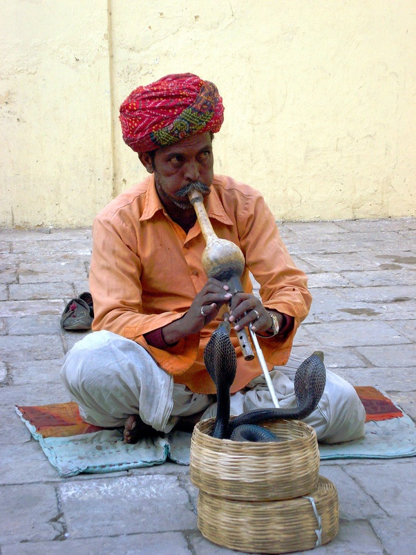 snake charmer meaning in hindi