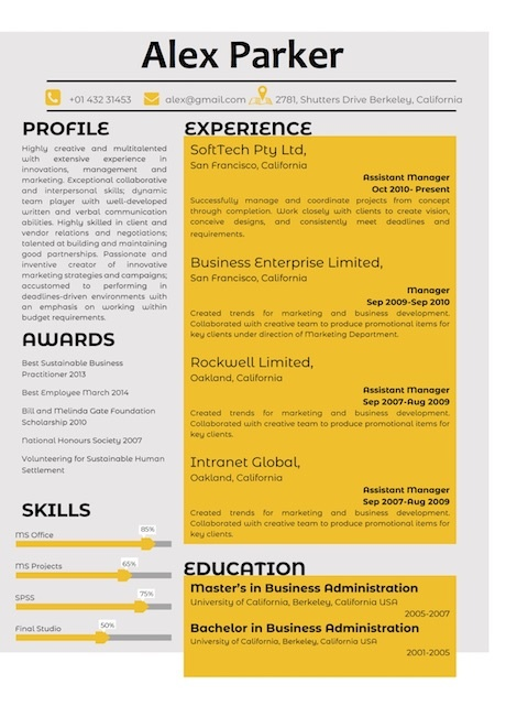 how much does it cost to design a resume template site