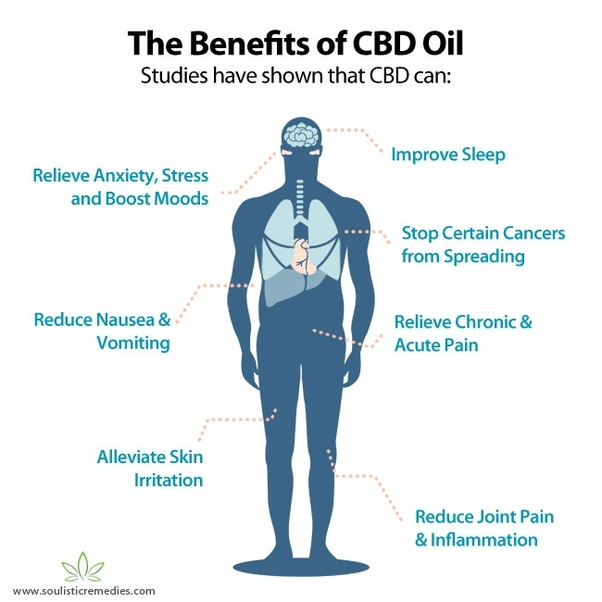 Using CBD oil for Migraines   Golden ...goldenstategreens.com