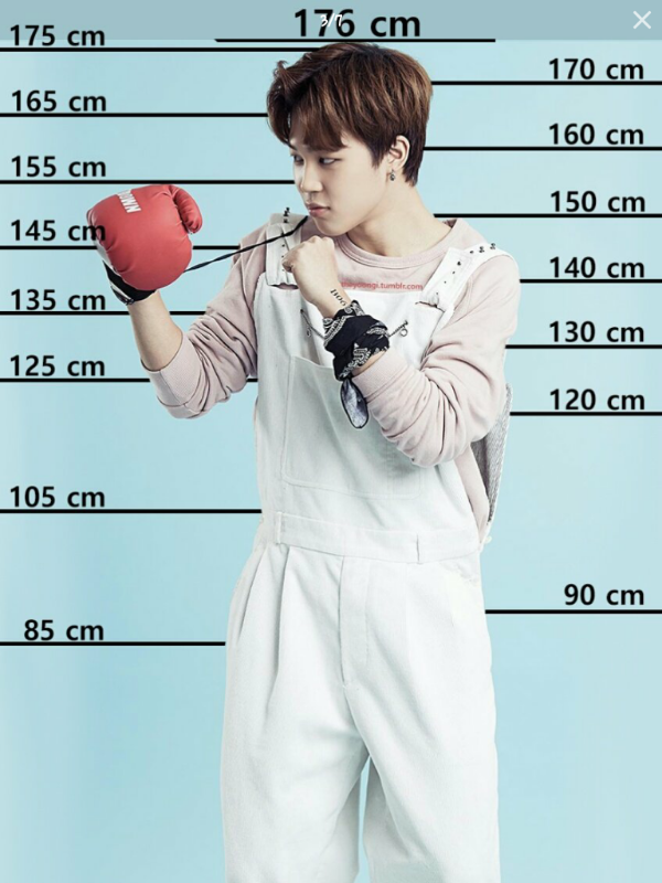 How tall is suga in cm