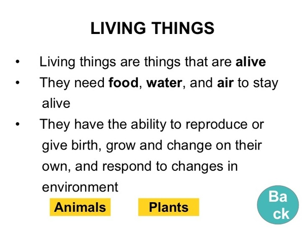 What Is The Definition Of Living Thing Quora