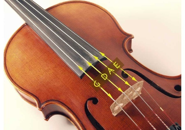 how many strings does a violin have quora