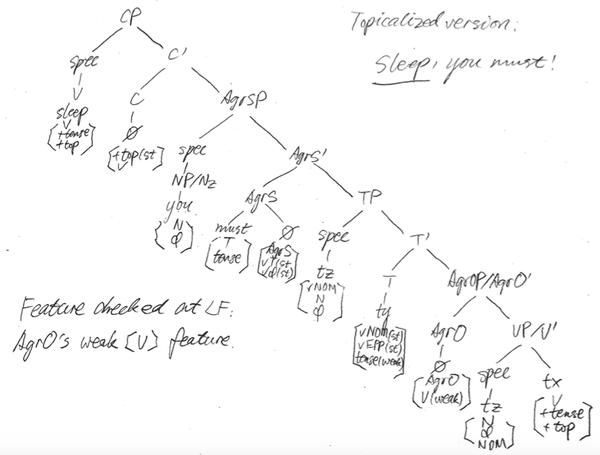 how to analyze topicalized sentences in chomsky u0026 39 s