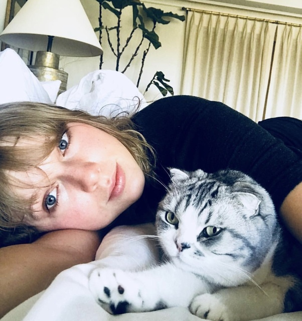 What Are Taylor Swift S Cats Called Quora