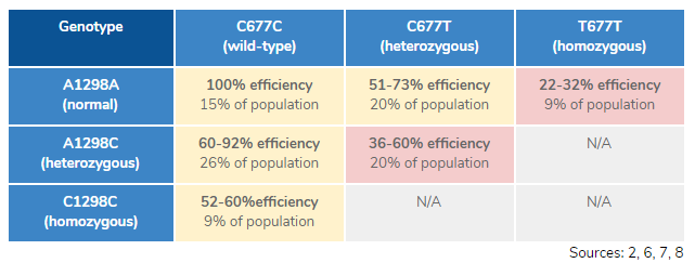 Can 23andMe detect the MTHFR C677T & A1298C variants? - Quora