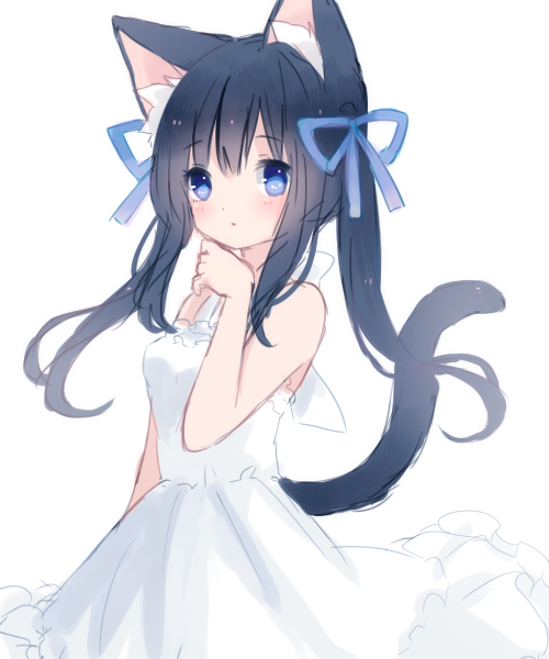 Business your Adorable and sexy neko girls