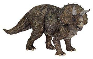 Children S Museum Of Indianapolis The Dracorex Is An Herbivorous Dinosaur