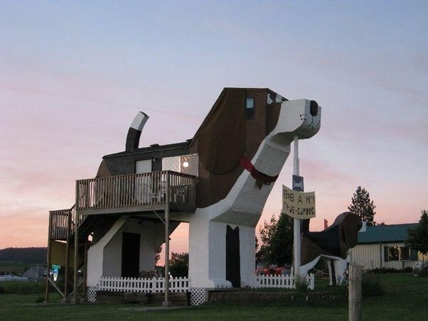 What are some of the most interesting home designs in for Design for the home