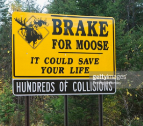 what is a moose crossing sign quora