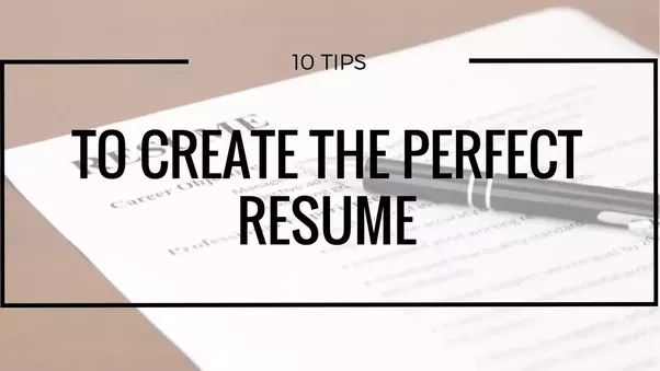 what does a perfect resume look like what all it should contain