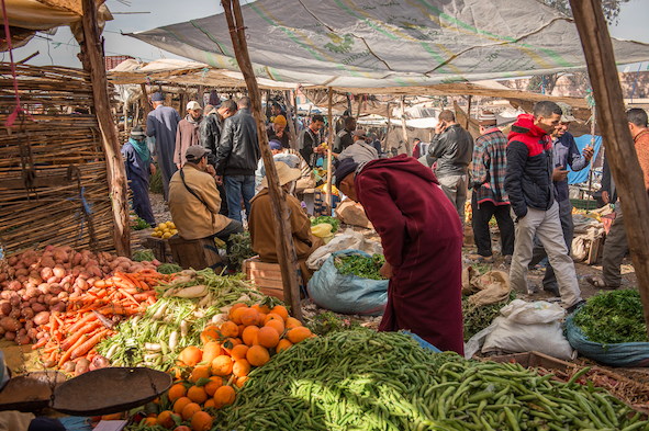 rural poverty in morocco The role of women in rural development, food production and  poverty eradication is a key challenge for rural women new poverty estimates from  #morocco: #.