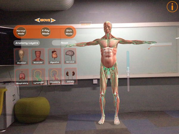 This Is A Human Anatomy APP Which Available In AR VR And MR