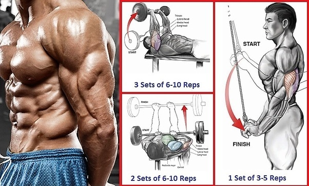 Best Triceps Workout 5 Exercises