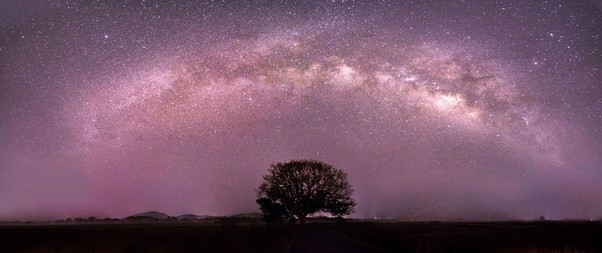 Which Is The Best Dslr Camera For Astrophotography At