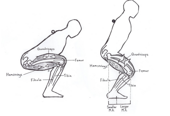 Why do your knees hurt when doing squats? - Quora