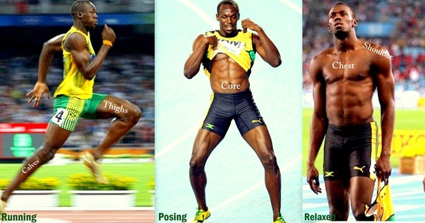Sprinting muscles