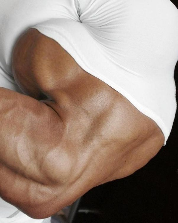 What size are your biceps? - Quora