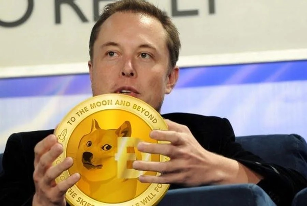Warum musk Elon So Dogecoin so sehr