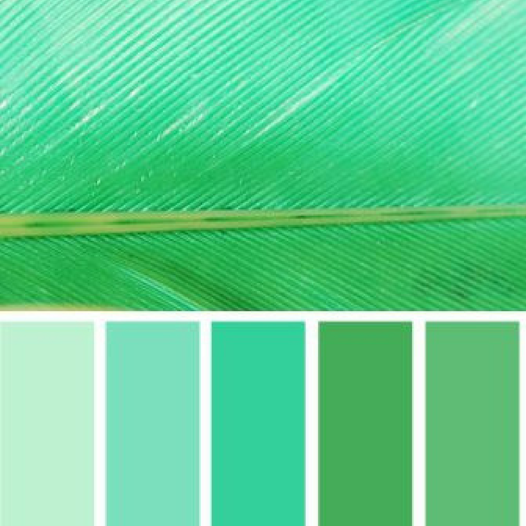 Hi I Have Shared A Color Palettes For Ocean Green You Can Pick Any One Of Them And Use It On Your Well