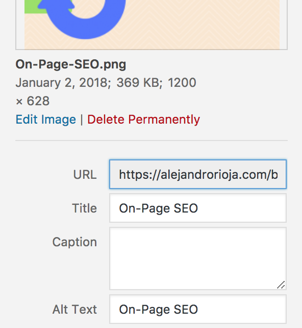 what are the things that one has to check on in seo on page