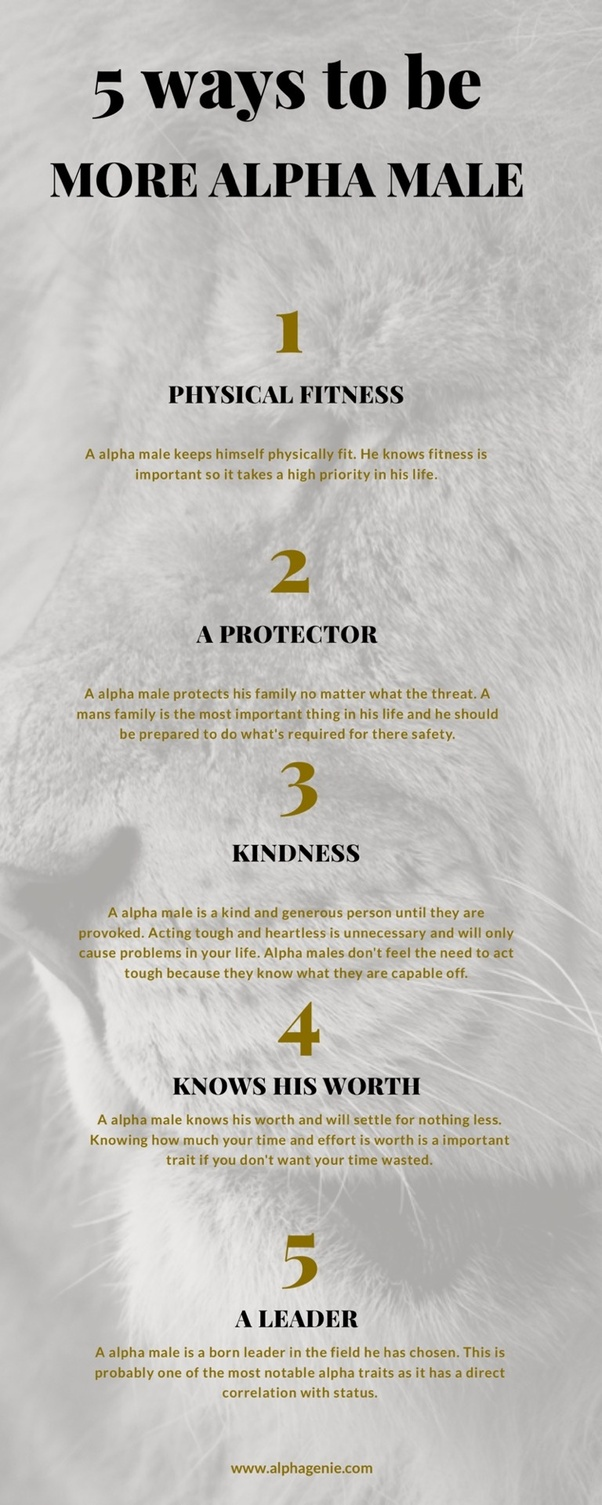 What Are The Traits Of An Alpha Male What Characteristics Need To