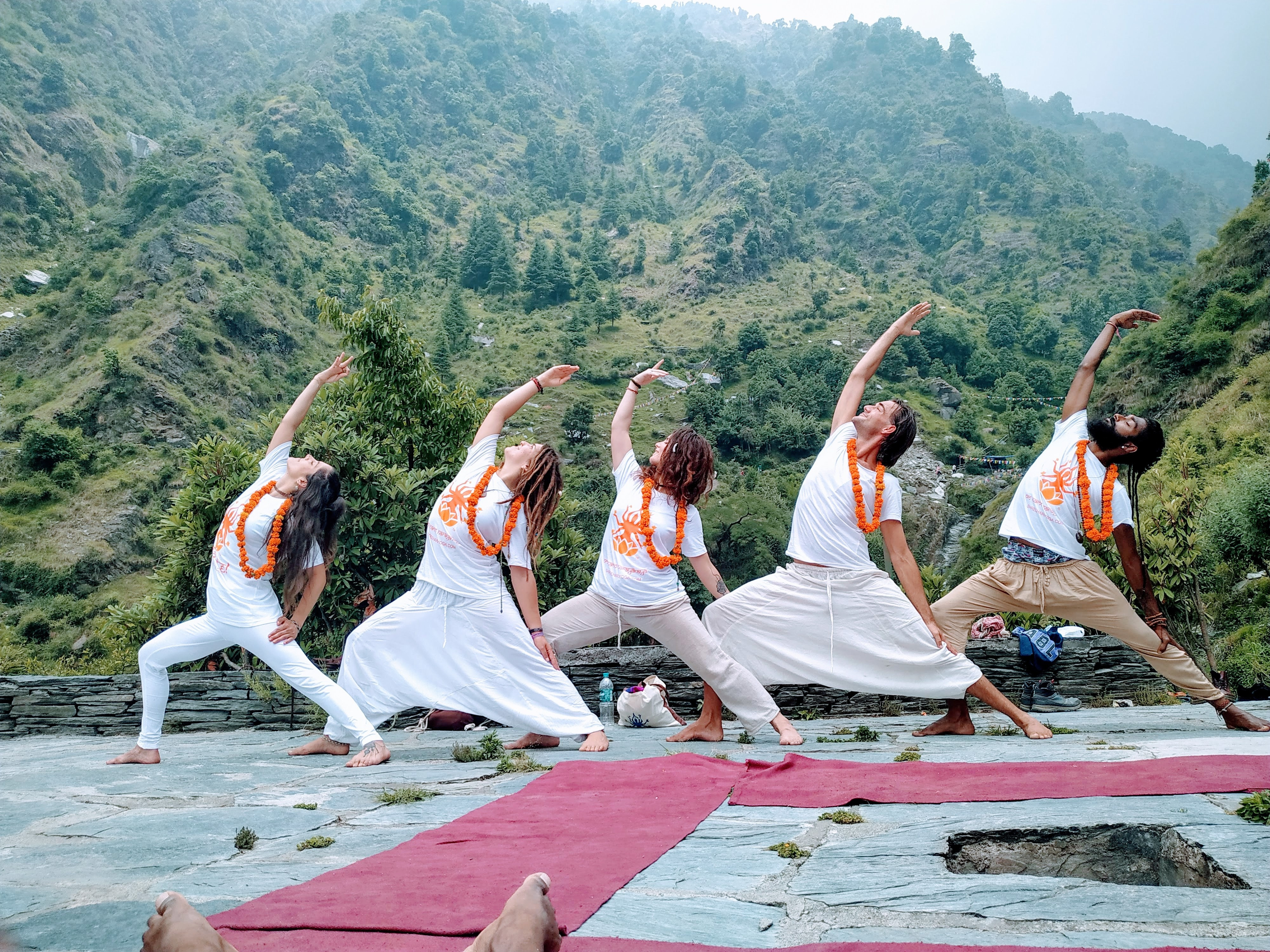Which is the best yoga ashram in India? - Quora