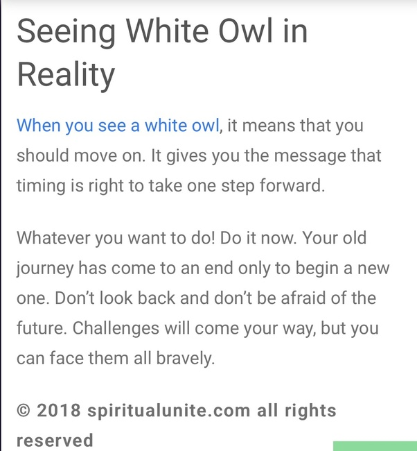 What is the spiritual meaning of a white owl? - Quora