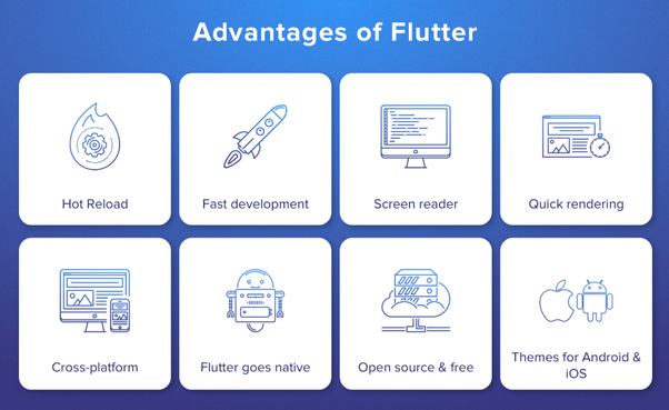What are the features and benefits of the Google Flutter
