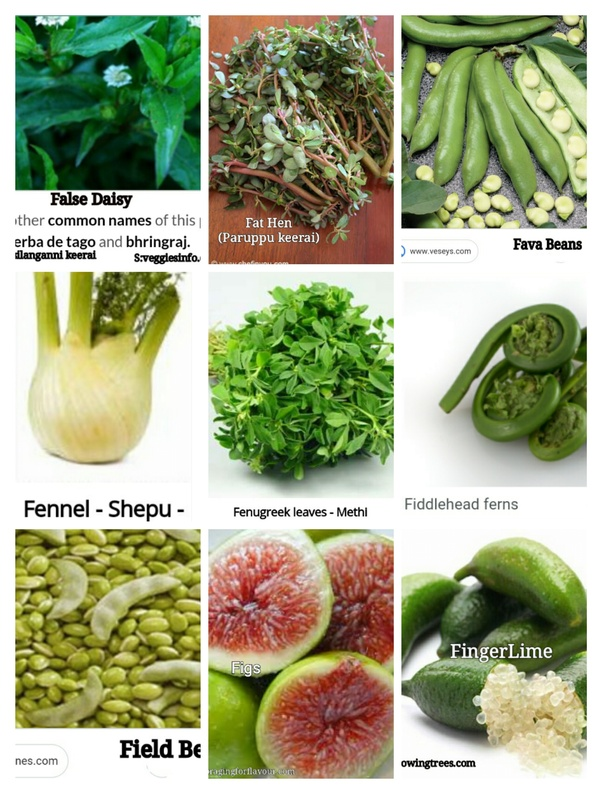 What Are Vegetables That Start With F