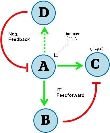 Quiver polar coordinates matlab tutorial pdf