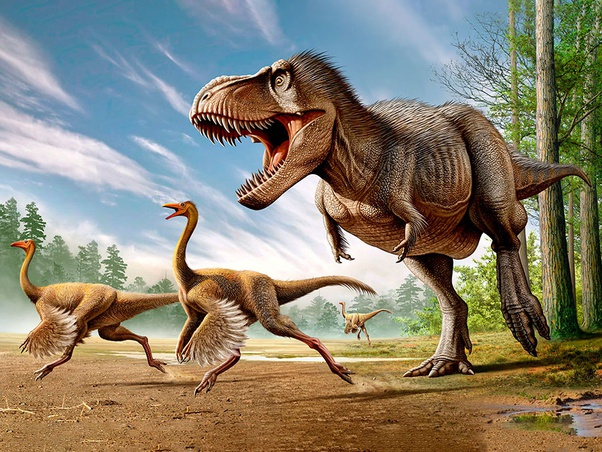Is It Possible That Dinosaurs Will Survive To This Day Alongside Humans If There Wasn T A Meteor Strike Millions Of Years Ago Quora