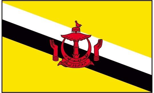 Brunei Flag Design