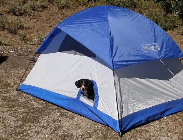 Car c&ing our Coleman tent had a separate dog door! Indian Creek ... & Do you bring a separate tent for your dog when you go camping? - Quora