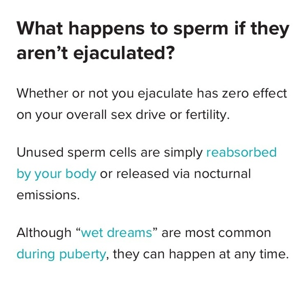 Can Men Ejaculate Twice A Day Quora