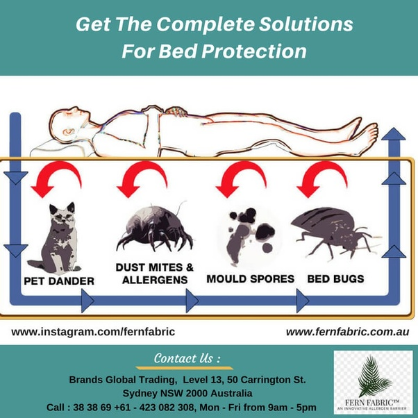 Dust Mite Covers With Premium Quality So If You Want To Know About It Just Contact Us 1300 38 69 We Will Certainly Feel Pleasure In Isting