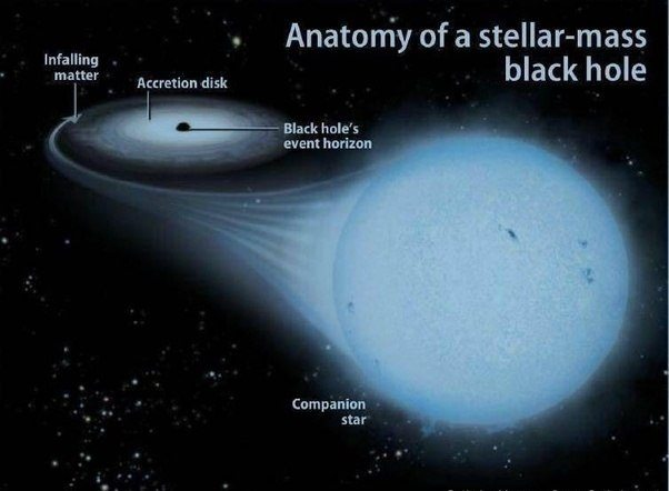 Since We Have Never Seen A Black Hole Can It Be Really Different