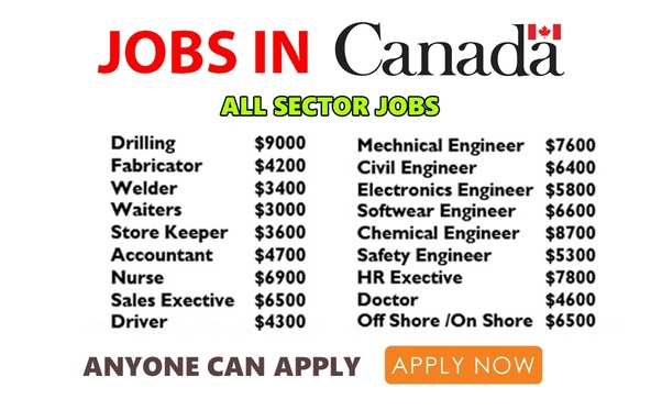 Image result for How to Get a Job in Canada as a Foreigner - Step-by-Step Guide