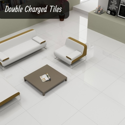 Which One Is Better For Flooring Double Charge Or Pgvt Tiles In