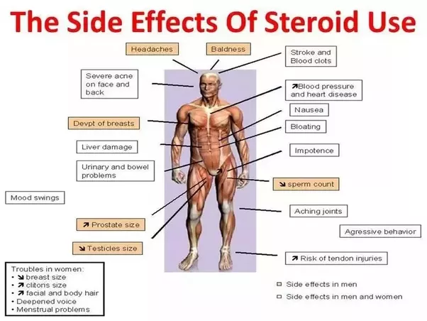 What do steroid pills do to your metabolism? - Quora