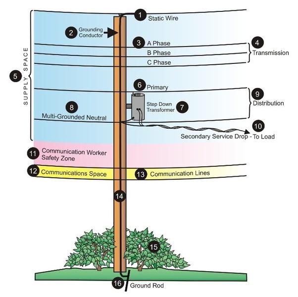 On a utility pole, how do you identify primary, intermediate