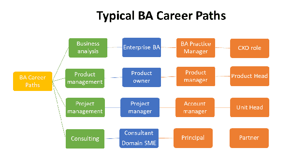 What Is The Career Path For A Business Analyst Quora
