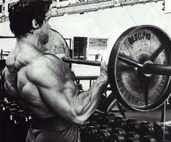 How much weight does arnold schwarzenegger barbell curl quora he said in an interview video called blueprint to cut when he talked about a number of training practices he and other 70s bodybuilders used malvernweather Images