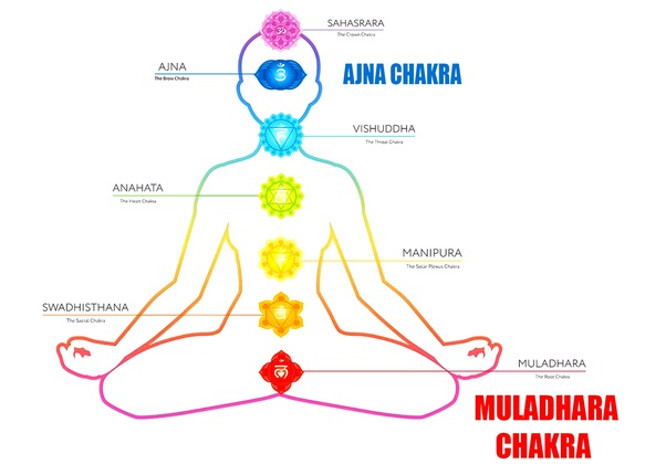 Can chakras be opened without Kundalini? - Quora