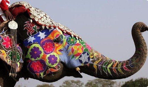 What Do The Painted Elephants Mean In India Quora