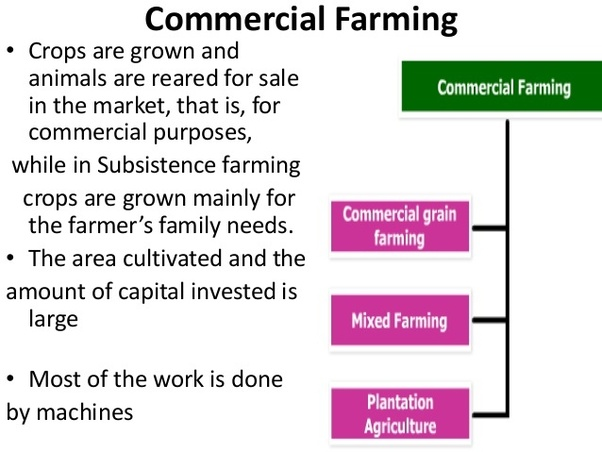 why is agriculture important