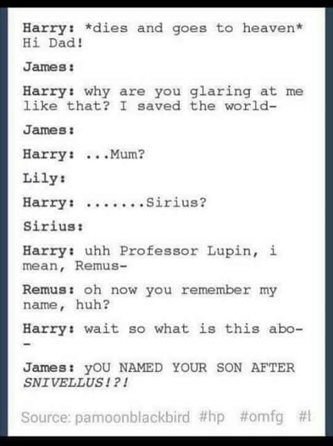 In the afterlife of Harry Potter world, what might James